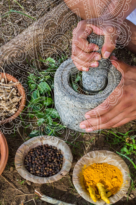 Health Professional Training | Institute of Integrative Ayurveda